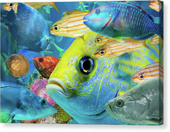 Fishy Collage 02 Canvas Print