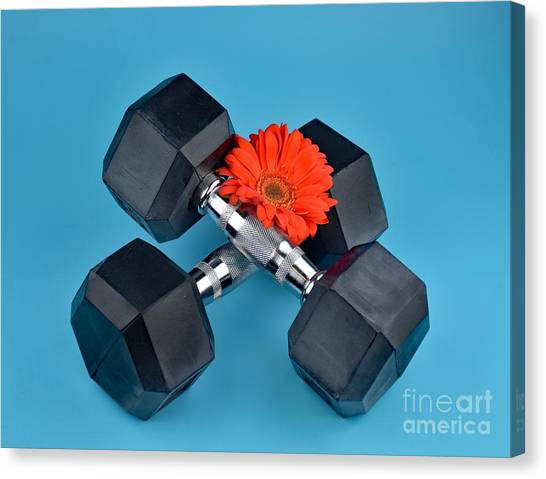 Fitness By Daisy Canvas Print