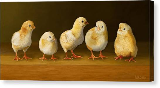 Five Chicks Named Moe Canvas Print