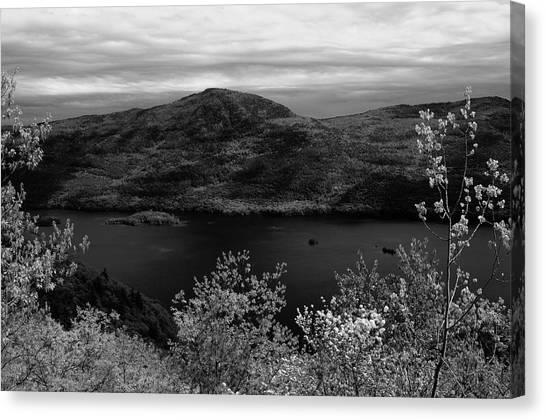Five Mile Mt View Canvas Print