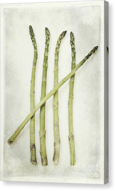 Asparagus Canvas Print - Five by Priska Wettstein