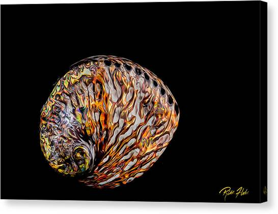 Flame Abalone Canvas Print