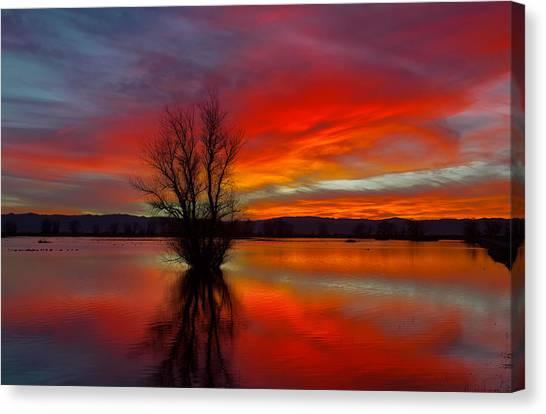 Flaming Reflections Canvas Print