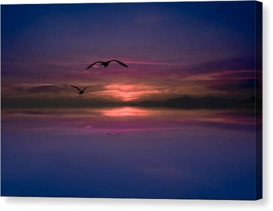Flaming Sky  Canvas Print