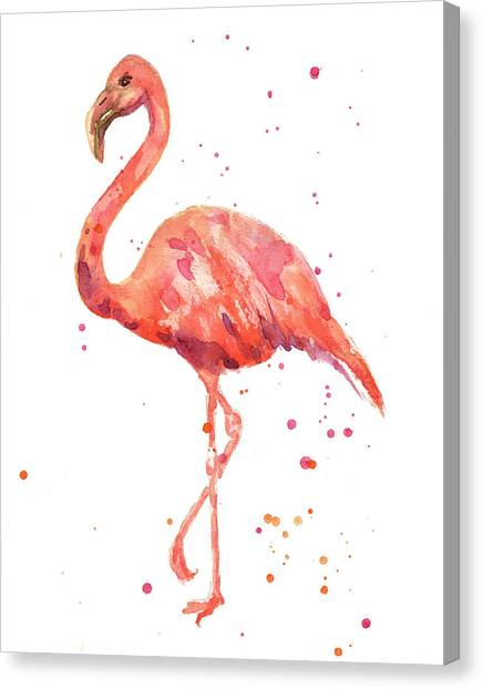 Water Birds Canvas Print - Flamingo Facing Left by Alison Fennell