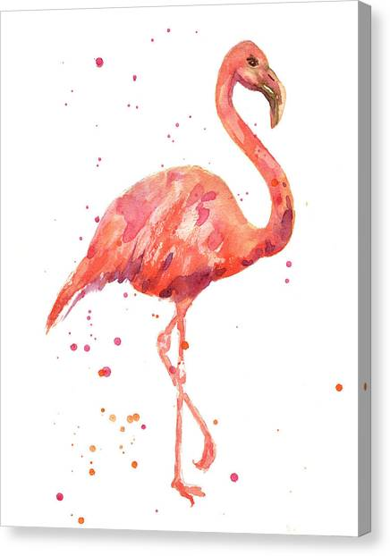 Flamingos Canvas Print - Flamingo Facing Right by Alison Fennell