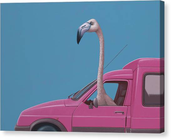 Flamingos Canvas Print - Flamingo by Jasper Oostland