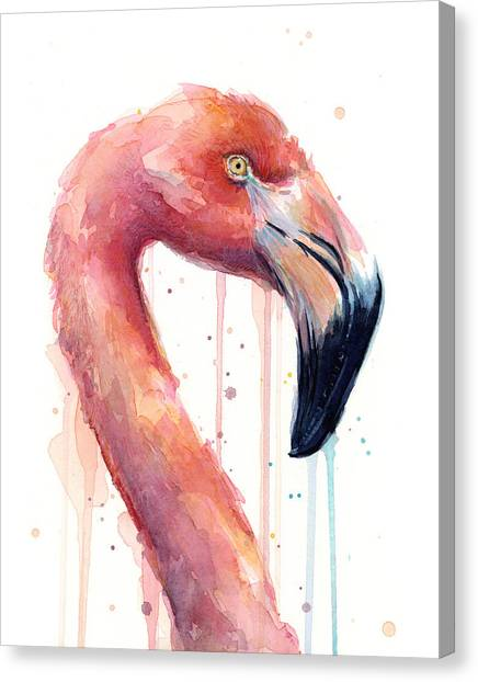 Flamingos Canvas Print - Flamingo Painting Watercolor - Facing Right by Olga Shvartsur