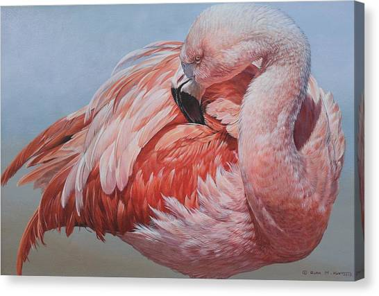 Canvas Print featuring the painting Flamingo Preening by Alan M Hunt