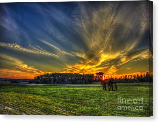 University Of Georgia Canvas Print - Flash The Iron Horse Sunset by Reid Callaway