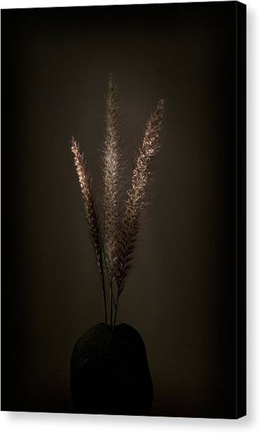 Flashlight Series 5-1 Canvas Print