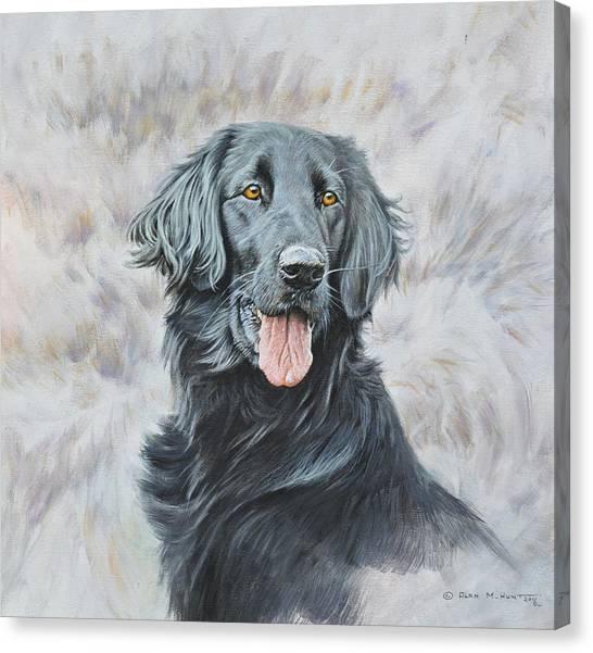 Flat Coated Retriever Portrait Canvas Print