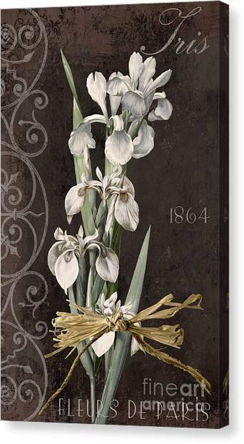 Amaryllis Canvas Print - Fleurs De Paris II by Mindy Sommers