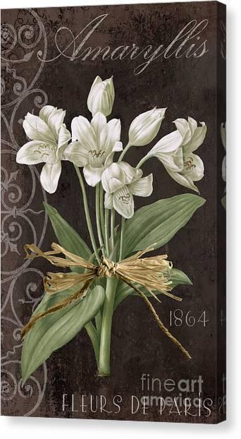 Amaryllis Canvas Print - Fleurs De Paris by Mindy Sommers