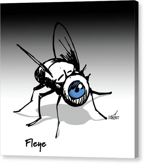 Fleye Canvas Print