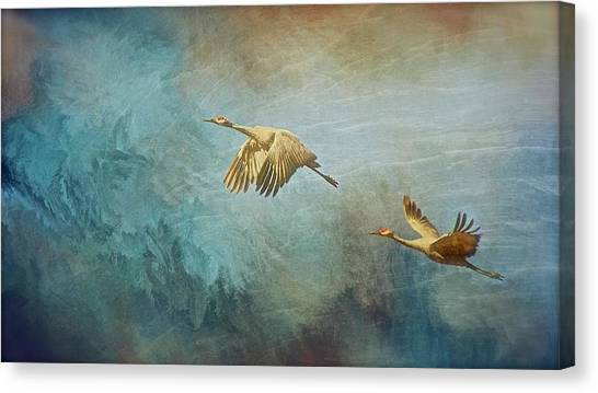 Flight Of Fantasy, Sandhill Cranes Canvas Print