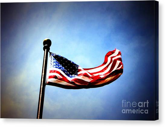 Flight Of Freedom Canvas Print