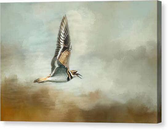 Killdeer Canvas Print - Flight Of The Killdeer by Jai Johnson