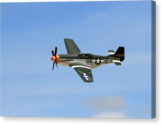 Wii Canvas Print - Flight Of The Mustang by Shoal Hollingsworth