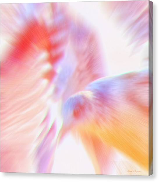 Flight Of The Seagull  Canvas Print