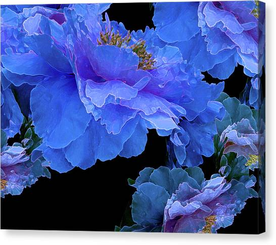 Floating Bouquet 10 Canvas Print