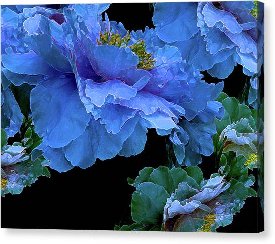Floating Bouquet 14 Canvas Print