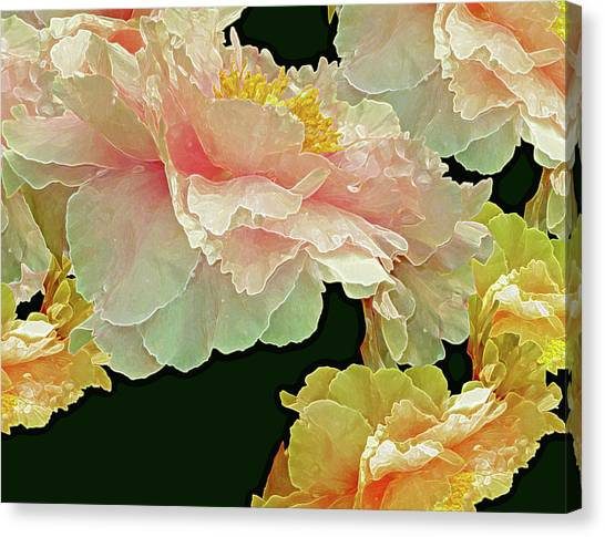 Floating Bouquet 31 Canvas Print