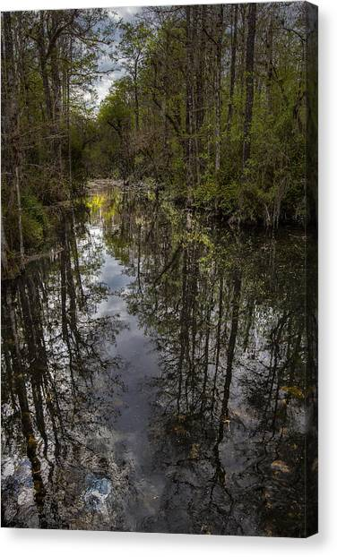 Everglades Canvas Print - Floating Down The River by Jon Glaser