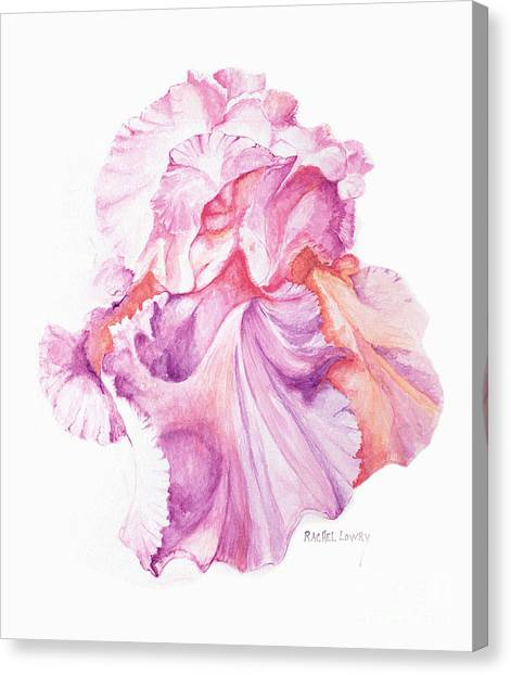 Floating Iris 1 Canvas Print