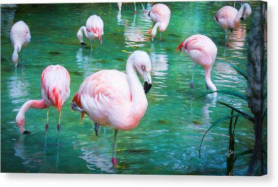 Flock Of Flamingos Canvas Print