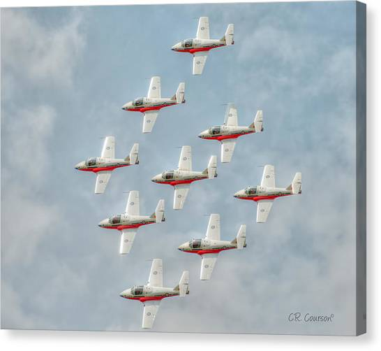 Flock Of Snowbirds Canvas Print