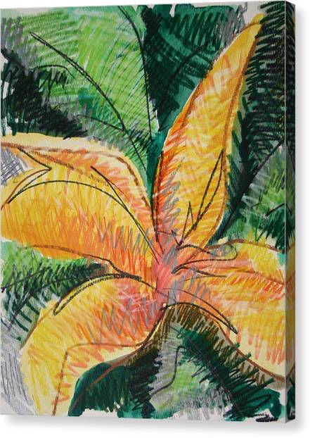 Flora Exotica 2 Canvas Print by Dodd Holsapple