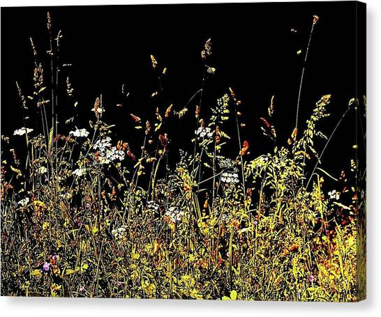 Canvas Print featuring the photograph Flora Play II by HweeYen Ong