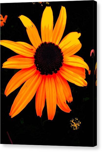 Floral 1 Canvas Print by Chuck Landskroner