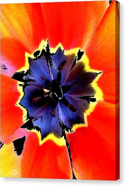 Floral 1229 Canvas Print by Chuck Landskroner