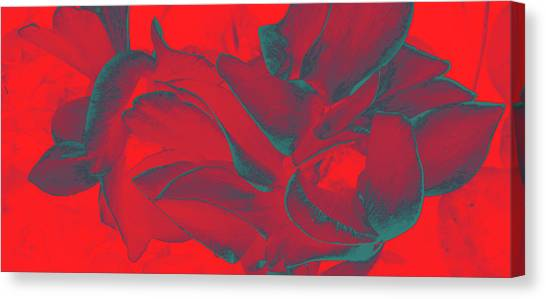 Floral Abstract In Dramatic Red Canvas Print