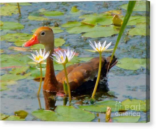 Floral Accessories  Canvas Print