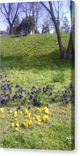Smallmouth Bass Canvas Print - Floral Details From A Park by Anamarija Marinovic
