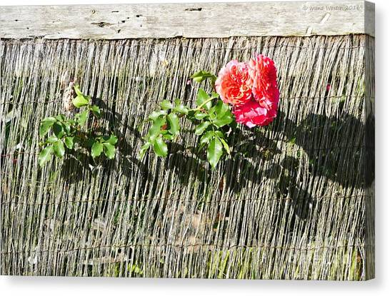 Floral Escape Canvas Print