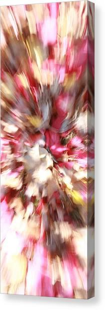 Floral Explosion No1 Canvas Print