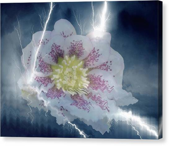 Floral Lightning Reflections Canvas Print