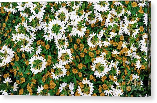 Floral Texture In The Summer Canvas Print