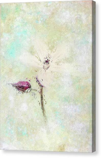 Canvas Print - Floral Whisper by Amanda Lakey