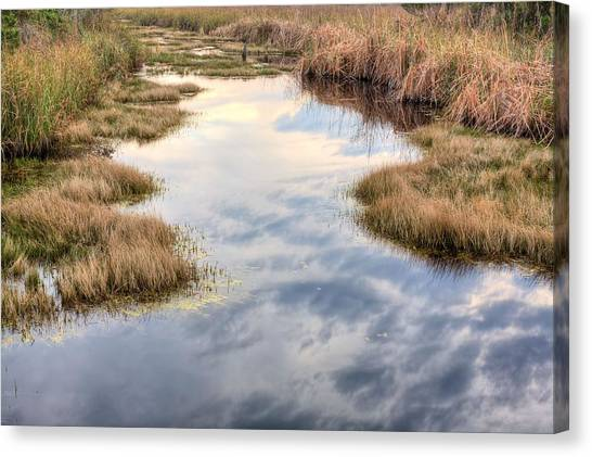 Flordia Wetlands Canvas Print by JC Findley