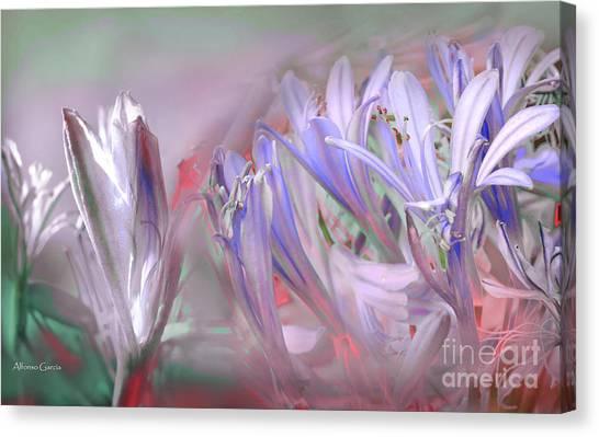 Flores De Verano Canvas Print