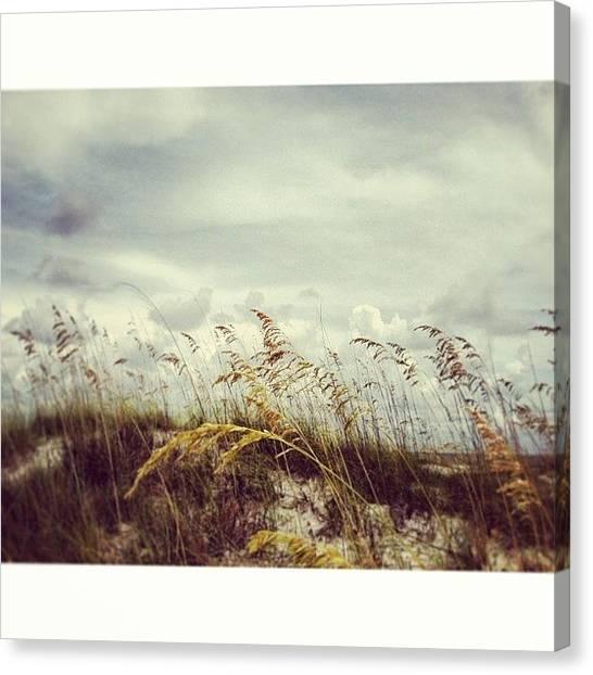 Beaches Canvas Print - #florida #beach #sky by Joan McCool
