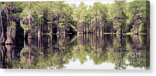 Florida Beauty 10 - Tallahassee Florida Canvas Print