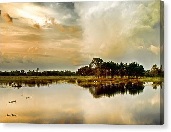 Florida Bird Pond Canvas Print