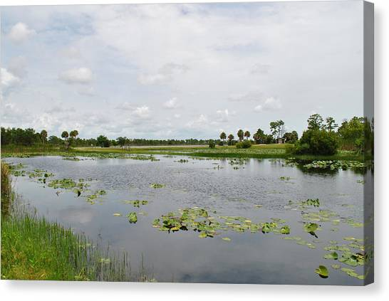 Florida Landscape Canvas Print by Steven Scott