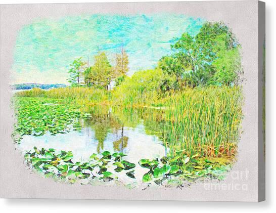 Wetlands Canvas Print - Florida Wetlands by Laura D Young